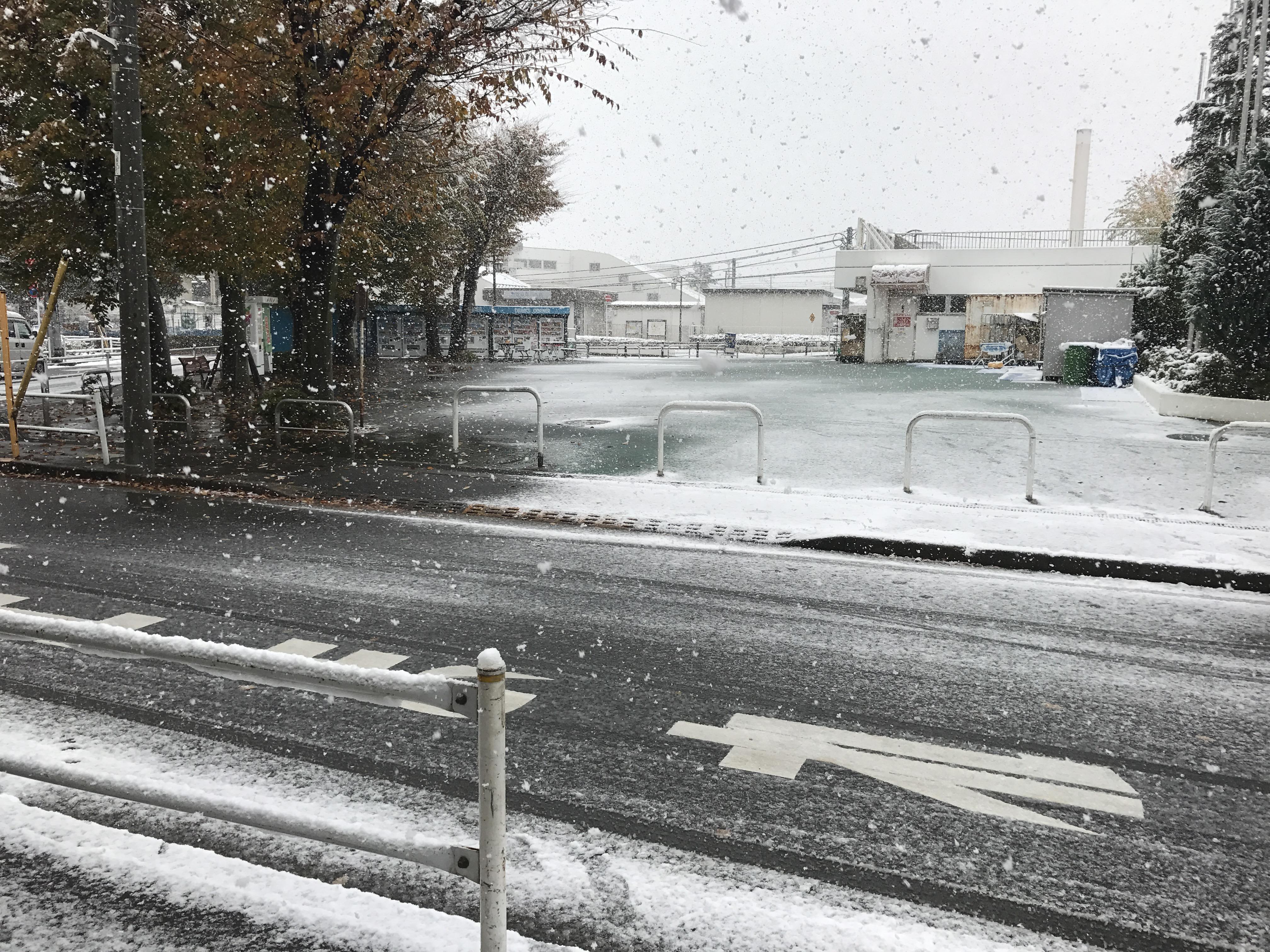 2016冬支度