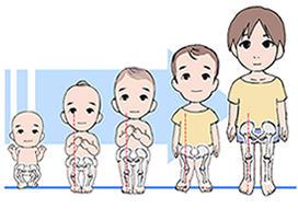 子供のO脚・X脚